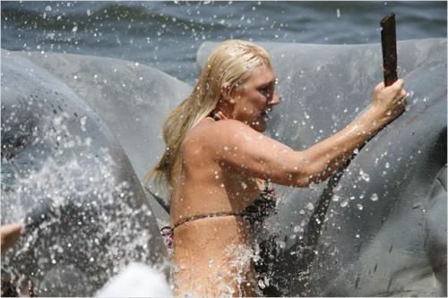 l'attaque du requin à deux tetes 02