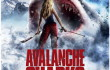 avalanche-shark