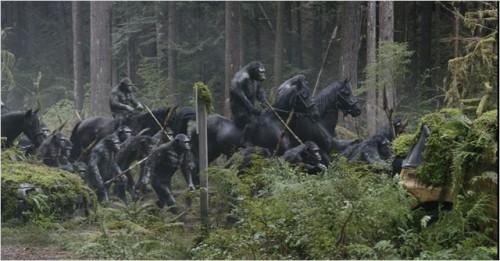 la planete des singes, l'affrontement 03